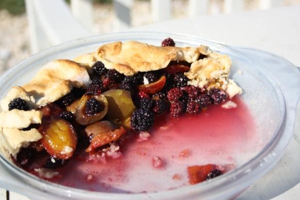 Wild bramble and plum pie