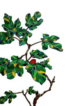Fig tree by Ryu Itadani
